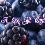www.shopsmartfeedback.com the Shop Smart Constant Customer Feedback Survey $250 Gift Card