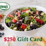 www.barneysfeedback.com Barney's Online Survey $250 Gift Card